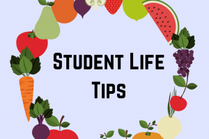 Student Life Tips Instagram photo